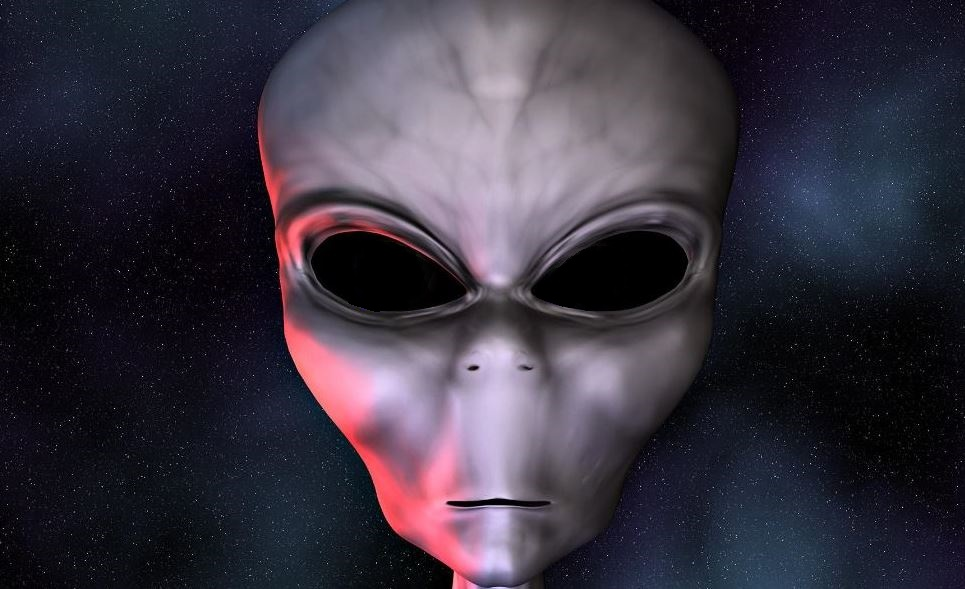 ARTICLE  ALIEN  83736