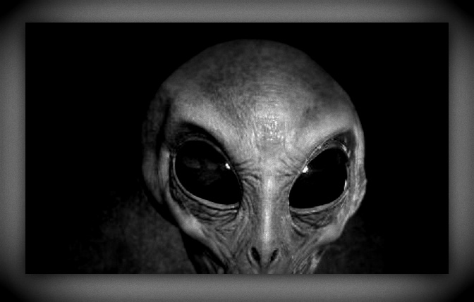 Alien Photo: WORLD UFO PHOTOS AND NEWS.ORG