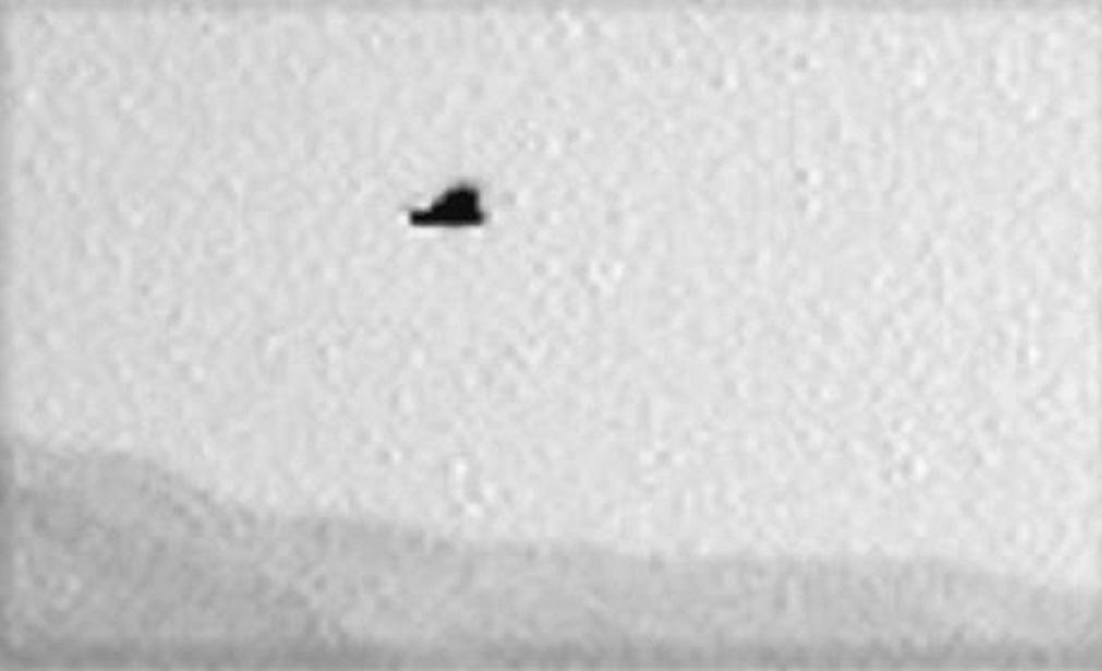 Mars Curiosity Rover Photographes Large Bird Or Alien ...